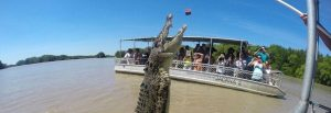 Jumping-Crocodile-Tours